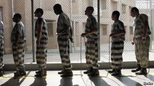 Jailhouse Nation